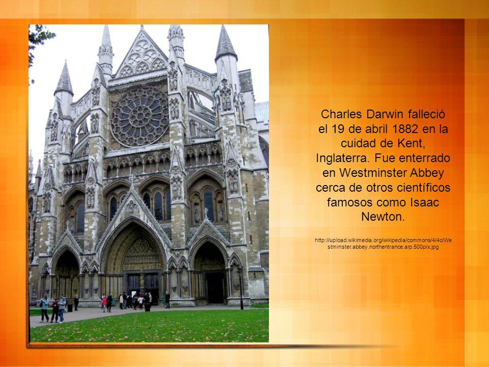 Charles Darwin falleció el 19 de abril 1882 en la cuidad de Kent, Inglaterra. Fue enterrado en Westminster Abbey cerca de otros científicos famosos co