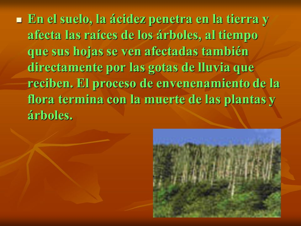 La sensibilidad a la acidificación es mayor en aquellas tierras donde la degradación de los minerales se produce lentamente. Cuando el suelo se acidif