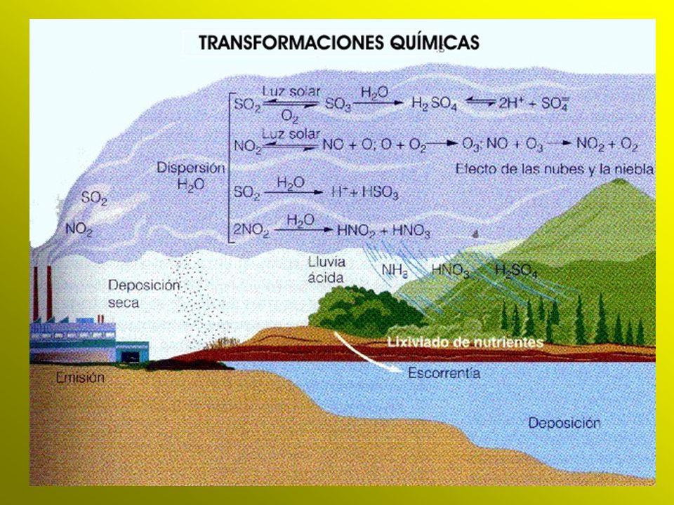 La sensibilidad a la acidificación es mayor en aquellas tierras donde la degradación de los minerales se produce lentamente.