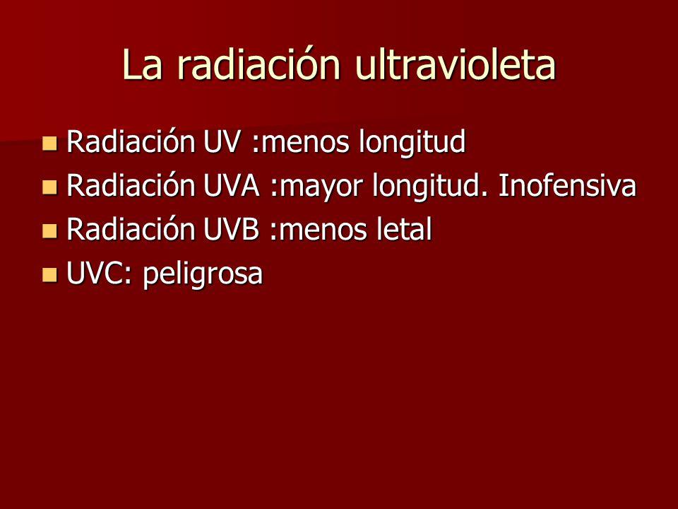 La radiación ultravioleta Radiación UV :menos longitud Radiación UVA :mayor longitud.