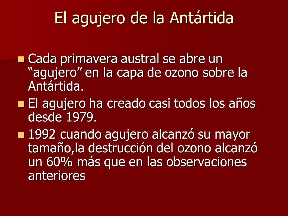 El agujero de la Antártida Cada primavera austral se abre un agujero en la capa de ozono sobre la Antártida.