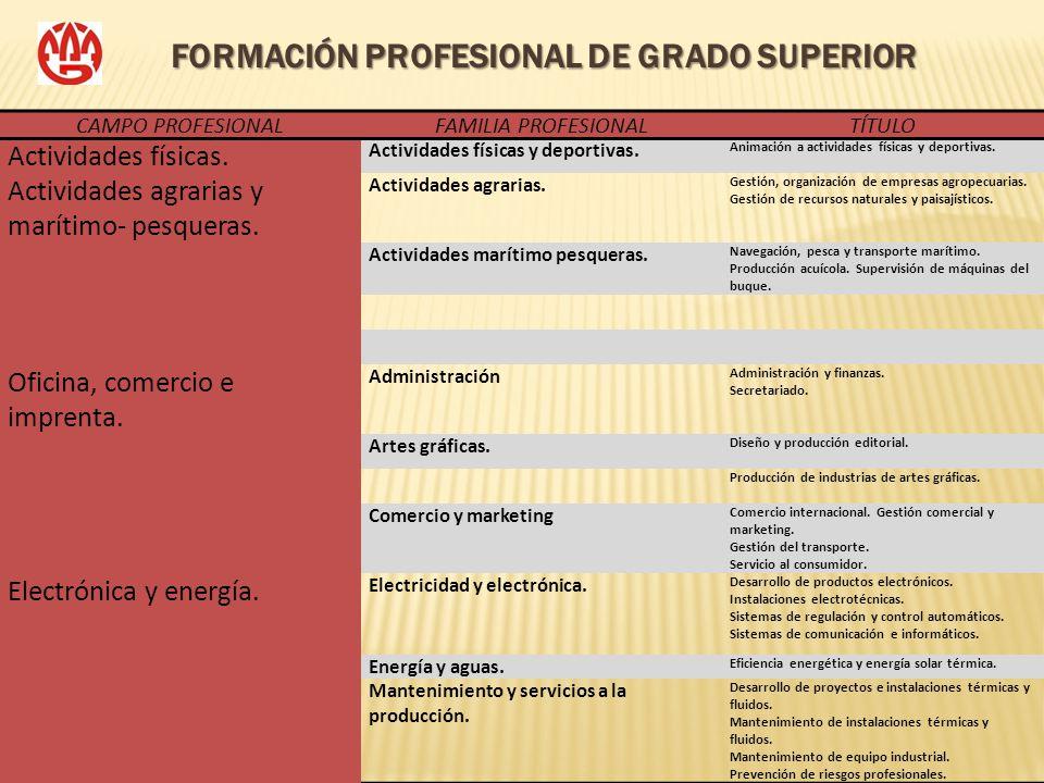 FORMACIÓN PROFESIONAL DE GRADO SUPERIOR CAMPO PROFESIONALFAMILIA PROFESIONALTÍTULO Actividades físicas. Actividades físicas y deportivas. Animación a