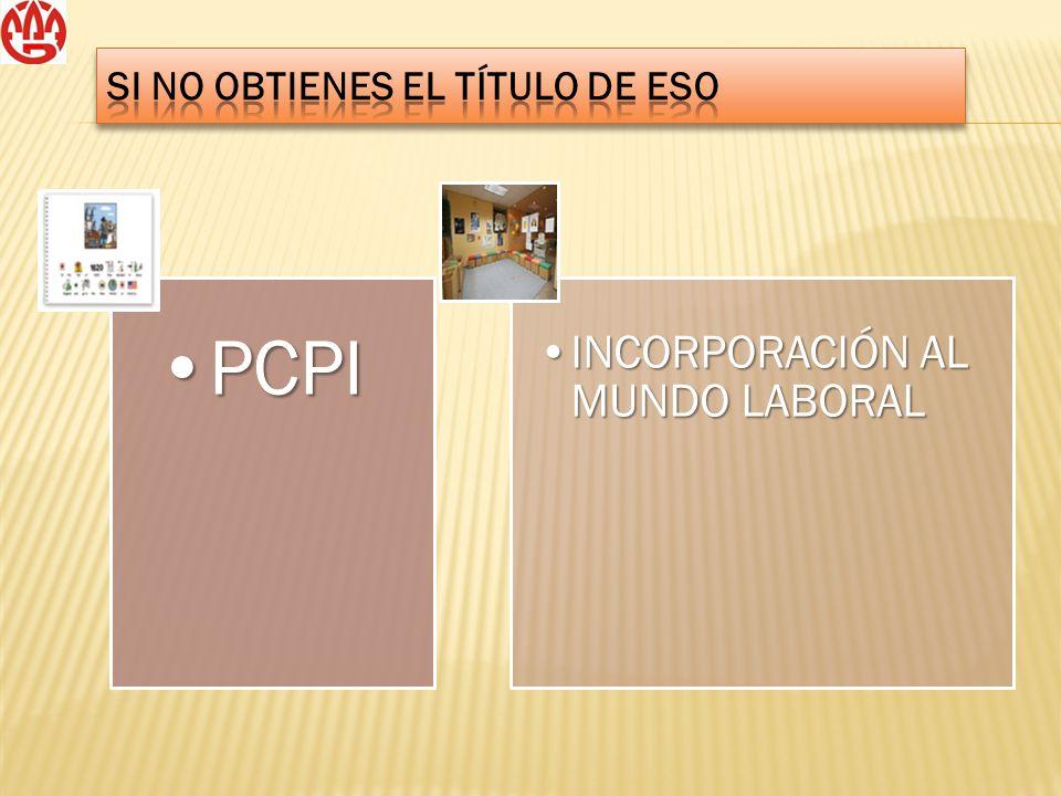 PCPIPCPI INCORPORACIÓN AL MUNDO LABORALINCORPORACIÓN AL MUNDO LABORAL