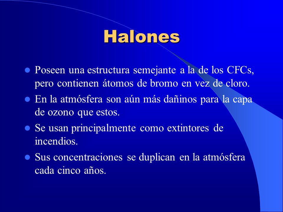 Halones Poseen una estructura semejante a la de los CFCs, pero contienen átomos de bromo en vez de cloro. En la atmósfera son aún más dañinos para la