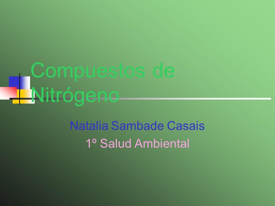 Compuestos de Nitrógeno Natalia Sambade Casais 1º Salud Ambiental