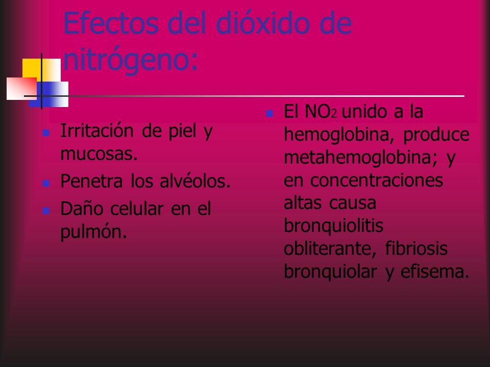 Efectos del dióxido de nitrógeno: Irritación de piel y mucosas.