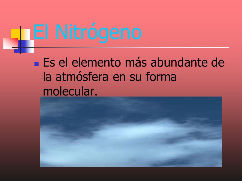 El Nitrógeno Es el elemento más abundante de la atmósfera en su forma molecular.