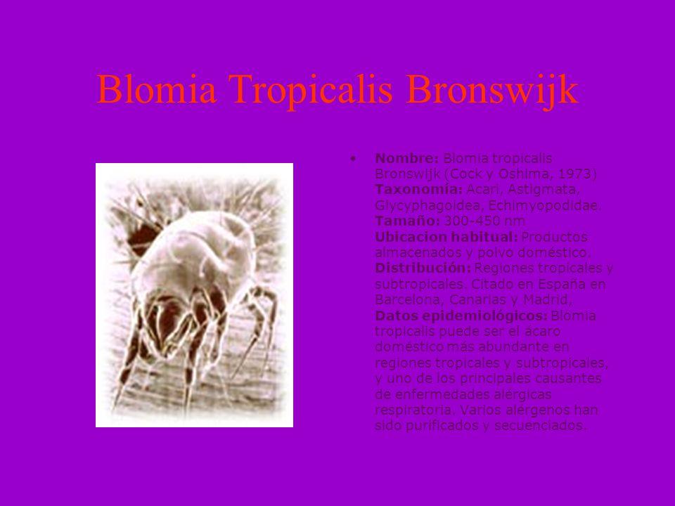 Chortoglyphus arcuatus Nombre: Chortoglyphus arcuatus (Troupeau, 1879) Taxonomía: Acari, Astigmata, Chortoglyphidae Tamaño: 250-400 nm Ubicacion habitual: Relativamente abundante en polvo de granjas, graneros y almacenes, también está presente en polvo doméstico.