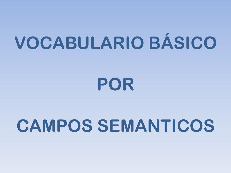 VOCABULARIO BÁSICO POR CAMPOS SEMANTICOS