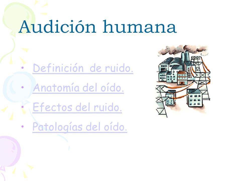 Audición humana Vanesa Tomé Cao María Freire Lestón 1º Salud ambiental