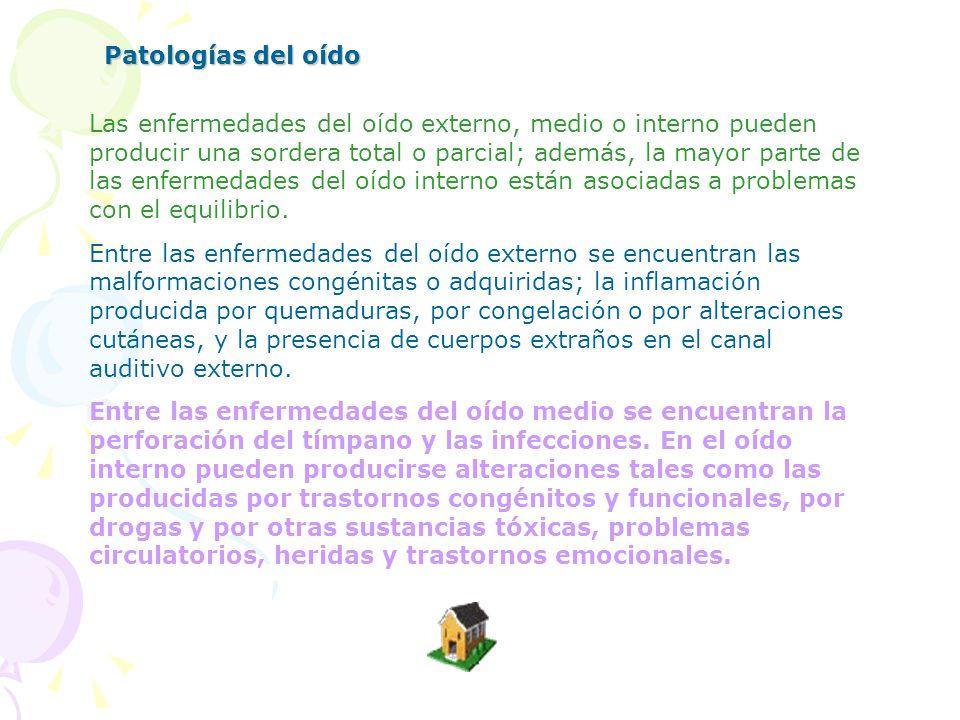 Patologías del oído Patologías del oído. Patologías del oído externo.