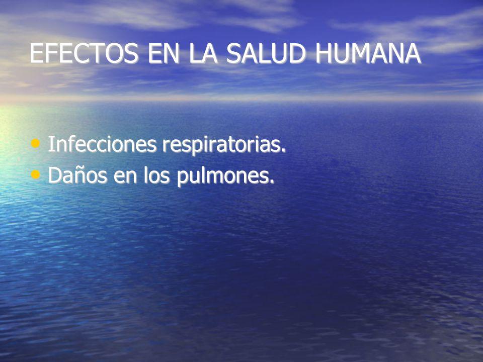 EFECTOS Efectos en la salud humana. Efectos en la salud humana.