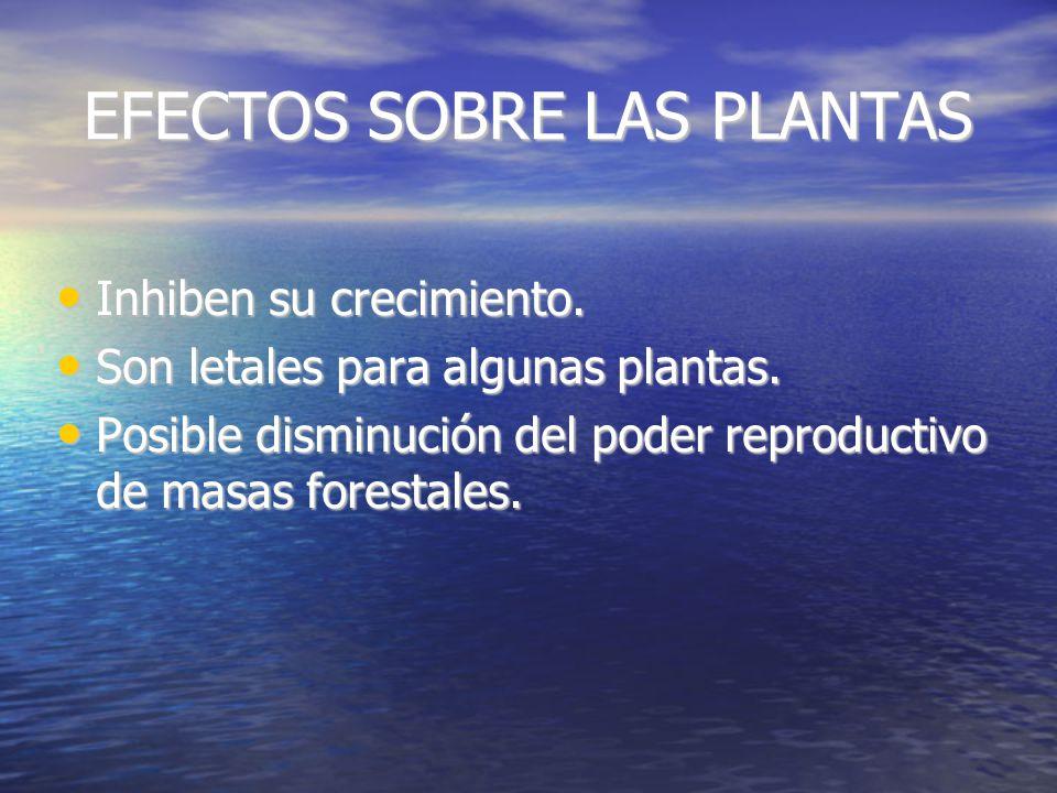 EFECTOS SOBRE LAS PLANTAS Inhiben su crecimiento.Inhiben su crecimiento.