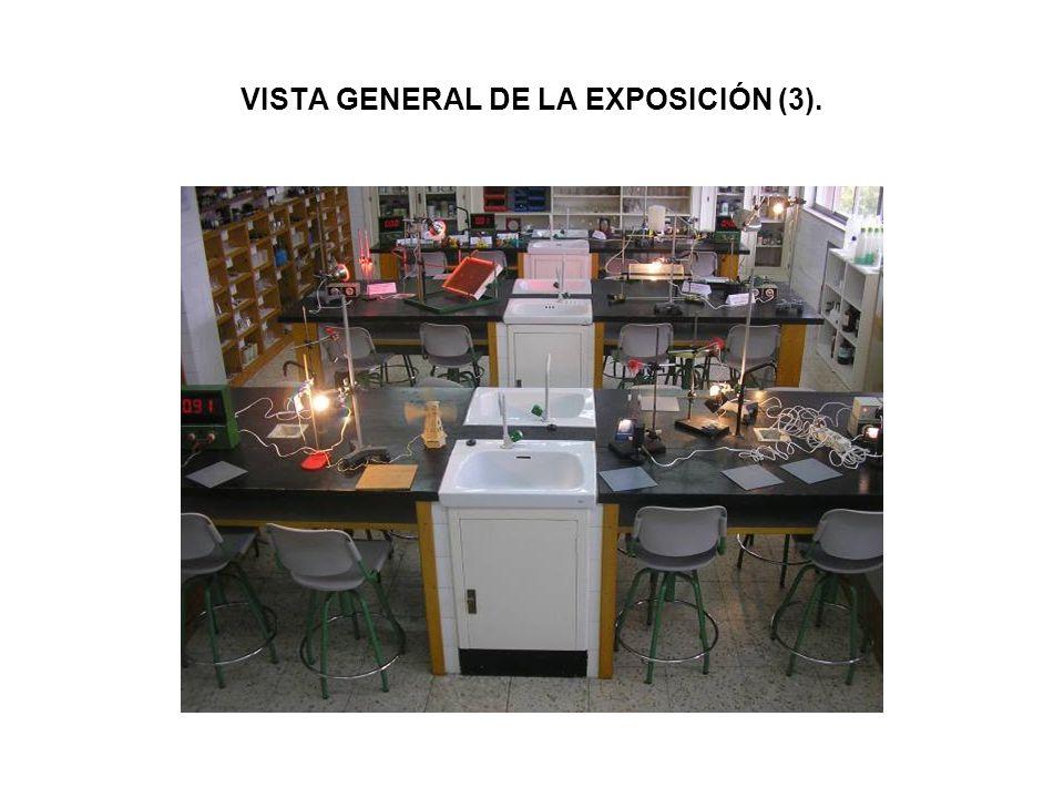 VISTA GENERAL DE LA EXPOSICIÓN (3).