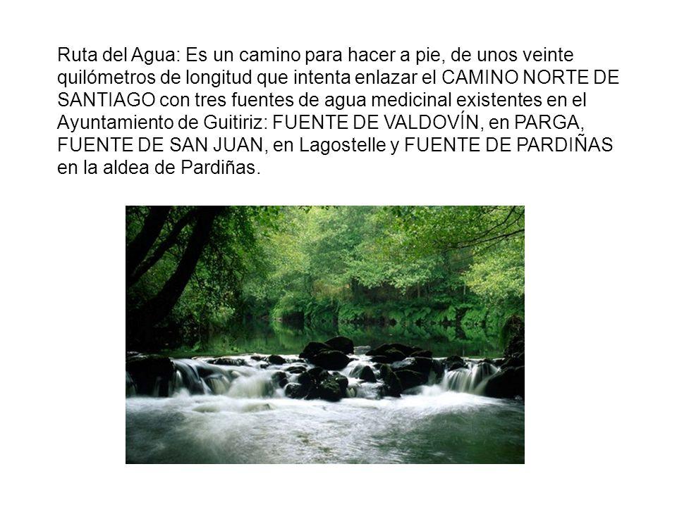Ruta del Agua: Es un camino para hacer a pie, de unos veinte quilómetros de longitud que intenta enlazar el CAMINO NORTE DE SANTIAGO con tres fuentes de agua medicinal existentes en el Ayuntamiento de Guitiriz: FUENTE DE VALDOVÍN, en PARGA, FUENTE DE SAN JUAN, en Lagostelle y FUENTE DE PARDIÑAS en la aldea de Pardiñas.