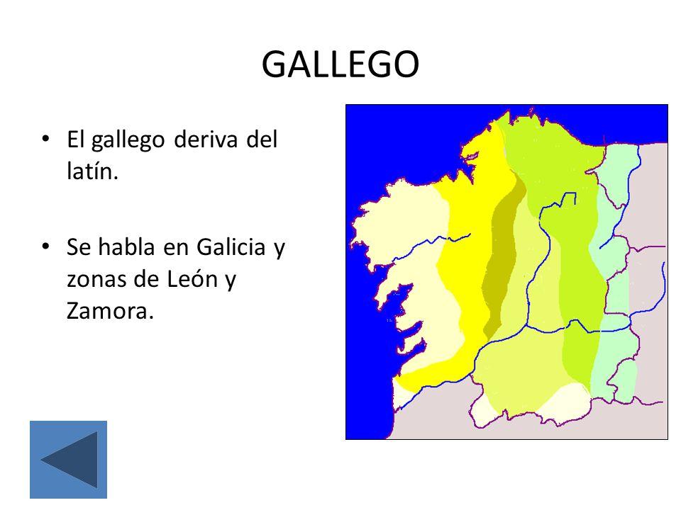 EUSKERA (VASCO) Es la única lengua de la península que no deriva del latín.