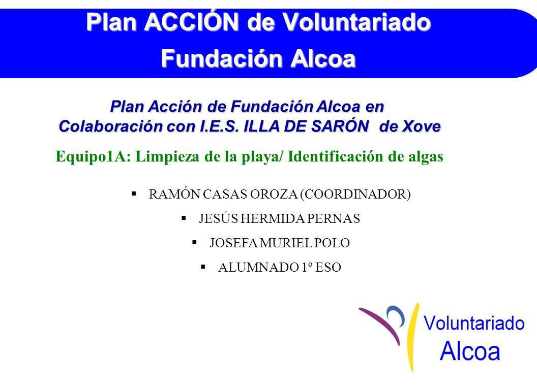 Plan ACCIÓN de Voluntariado Fundación Alcoa Equipo1A: Limpieza de la playa/ Identificación de algas RAMÓN CASAS OROZA (COORDINADOR) JESÚS HERMIDA PERNAS JOSEFA MURIEL POLO ALUMNADO 1º ESO Plan Acción de Fundación Alcoa en Colaboración con I.E.S.