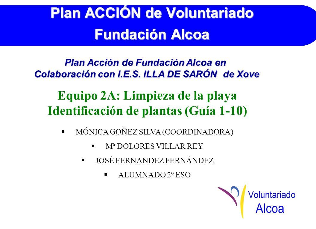 Plan ACCIÓN de Voluntariado Fundación Alcoa Equipo 2A: Limpieza de la playa Identificación de plantas (Guía 1-10) MÓNICA GOÑEZ SILVA (COORDINADORA) Mª DOLORES VILLAR REY JOSÉ FERNANDEZ FERNÁNDEZ ALUMNADO 2º ESO Plan Acción de Fundación Alcoa en Colaboración con I.E.S.