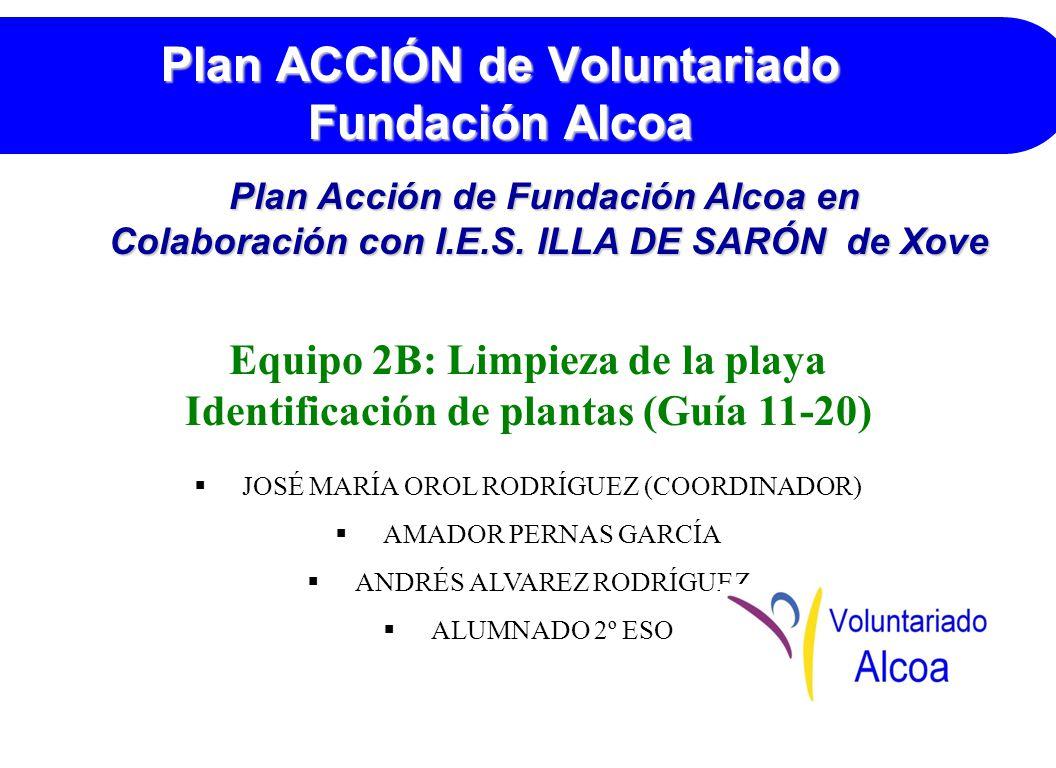 Plan ACCIÓN de Voluntariado Fundación Alcoa Equipo 2B: Limpieza de la playa Identificación de plantas (Guía 11-20) JOSÉ MARÍA OROL RODRÍGUEZ (COORDINADOR) AMADOR PERNAS GARCÍA ANDRÉS ALVAREZ RODRÍGUEZ ALUMNADO 2º ESO Plan Acción de Fundación Alcoa en Colaboración con I.E.S.