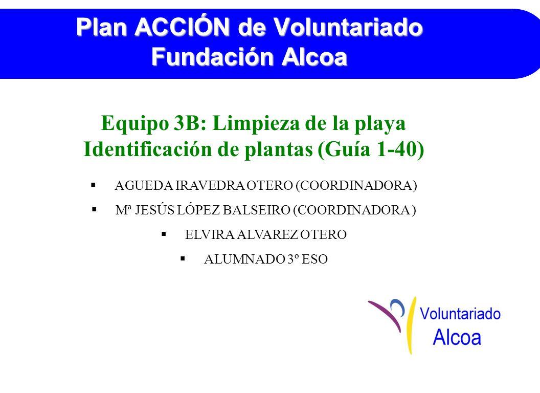 Plan ACCIÓN de Voluntariado Fundación Alcoa Equipo 3B: Limpieza de la playa Identificación de plantas (Guía 1-40) AGUEDA IRAVEDRA OTERO (COORDINADORA) Mª JESÚS LÓPEZ BALSEIRO (COORDINADORA ) ELVIRA ALVAREZ OTERO ALUMNADO 3º ESO