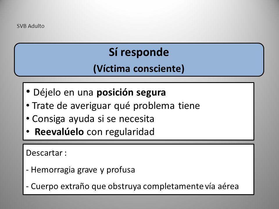 SVB Adulto Sí responde (Víctima consciente) Déjelo en una posición segura Trate de averiguar qué problema tiene Consiga ayuda si se necesita Reevalúel