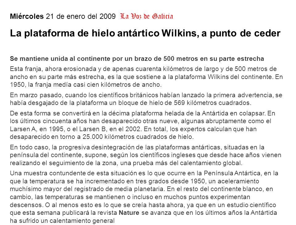 Miércoles 21 de enero del 2009 La Voz de Galicia La plataforma de hielo antártico Wilkins, a punto de ceder Se mantiene unida al continente por un brazo de 500 metros en su parte estrecha Esta franja, ahora erosionada y de apenas cuarenta kilómetros de largo y de 500 metros de ancho en su parte más estrecha, es la que sostiene a la plataforma Wilkins del continente.