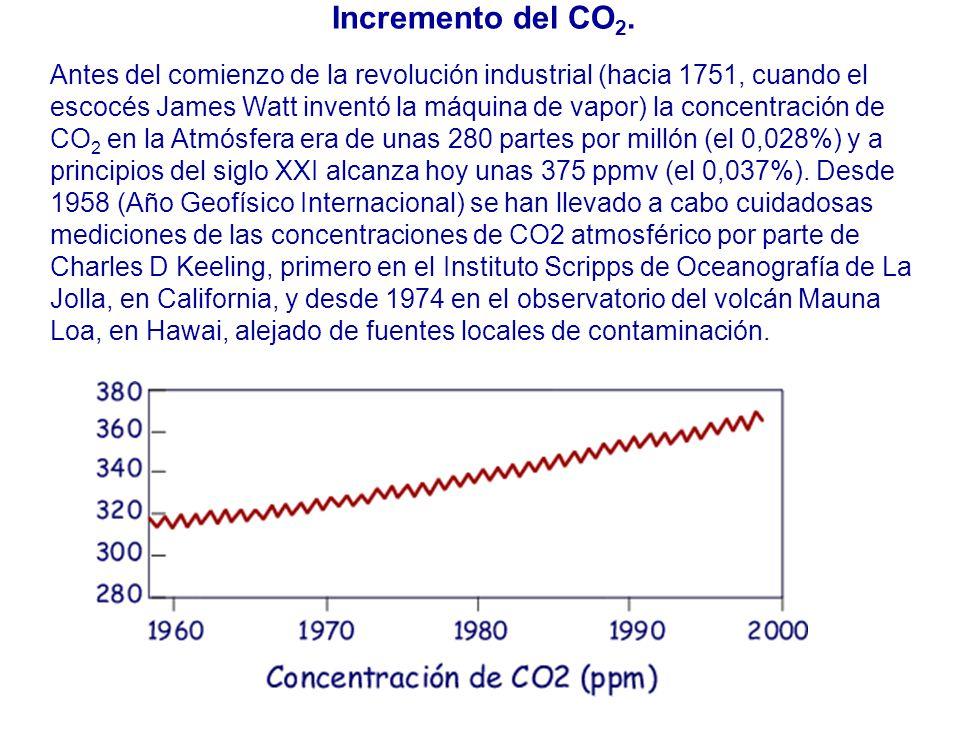 Incremento del CO 2.