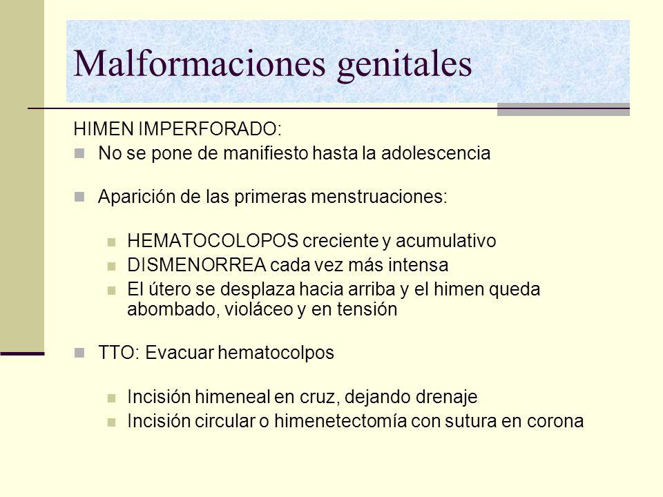 Malformaciones genitales HIMEN IMPERFORADO: No se pone de manifiesto hasta la adolescencia Aparición de las primeras menstruaciones: HEMATOCOLOPOS cre