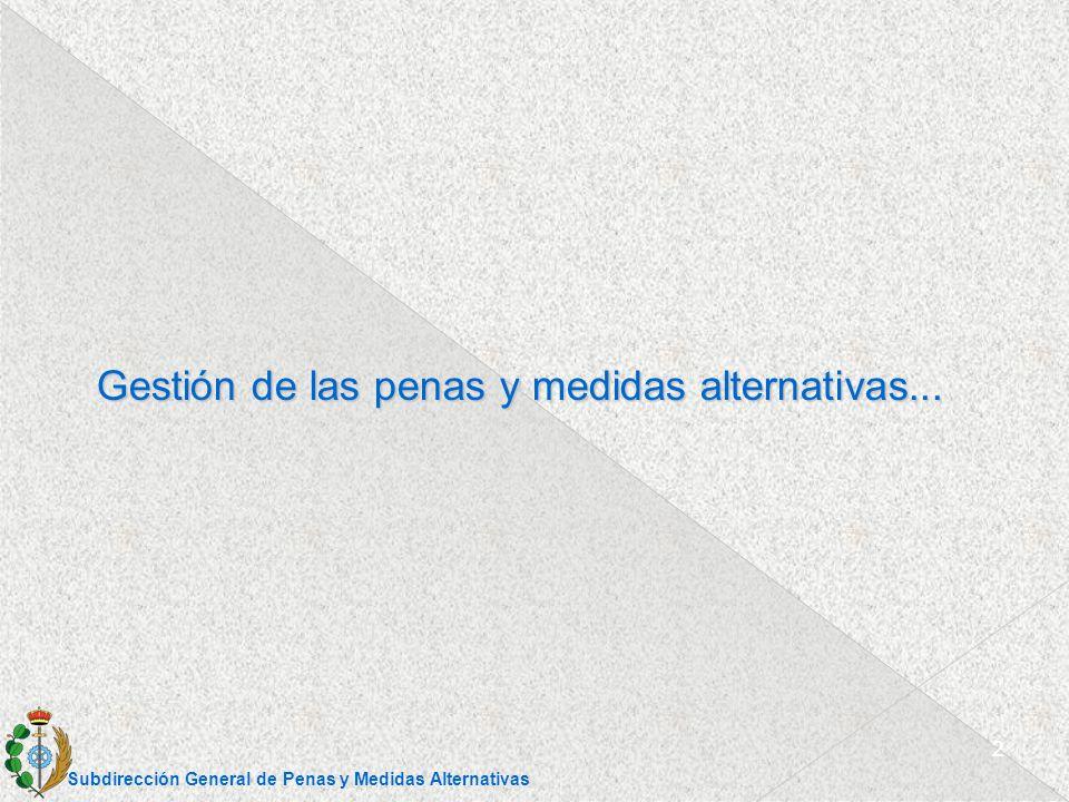 Dirección General de Coordinación Territorial y Medio Abierto SERVICIOS DE GESTION DE PENAS Y MEDIDAS ALTERNATIVAS RD 840/2011, Cap.