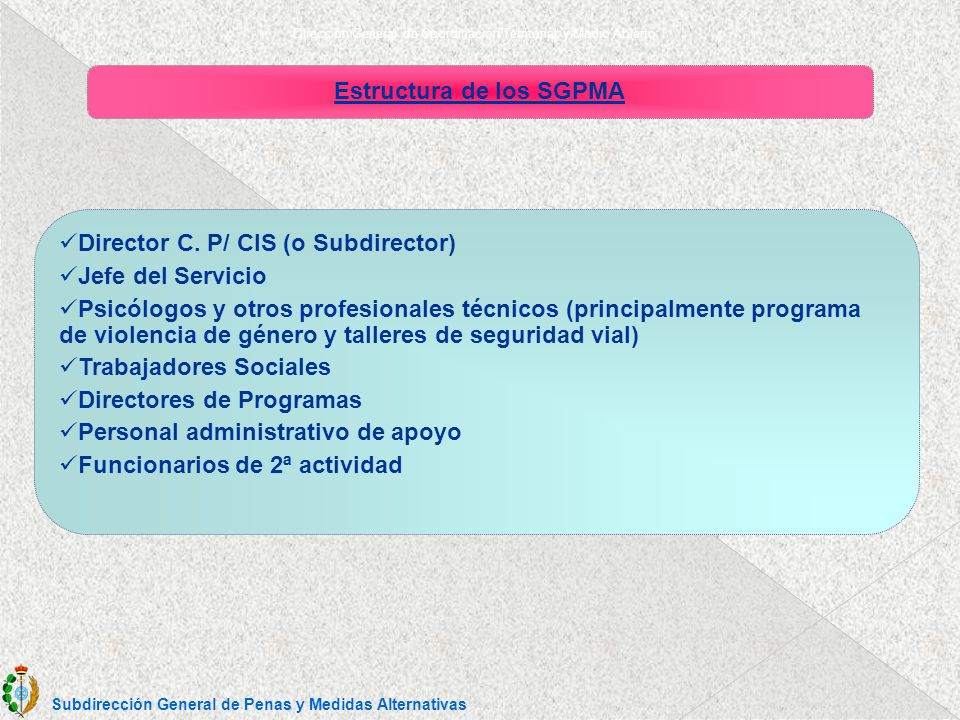 Dirección General de Coordinación Territorial y Medio Abierto Estructura de los SGPMA Director C.