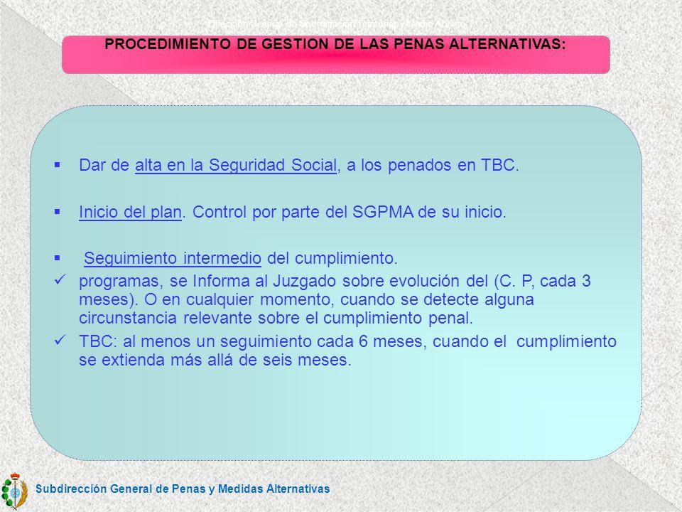 Dirección General de Coordinación Territorial y Medio Abierto PROCEDIMIENTO DE GESTION DE LAS PENAS ALTERNATIVAS 8.