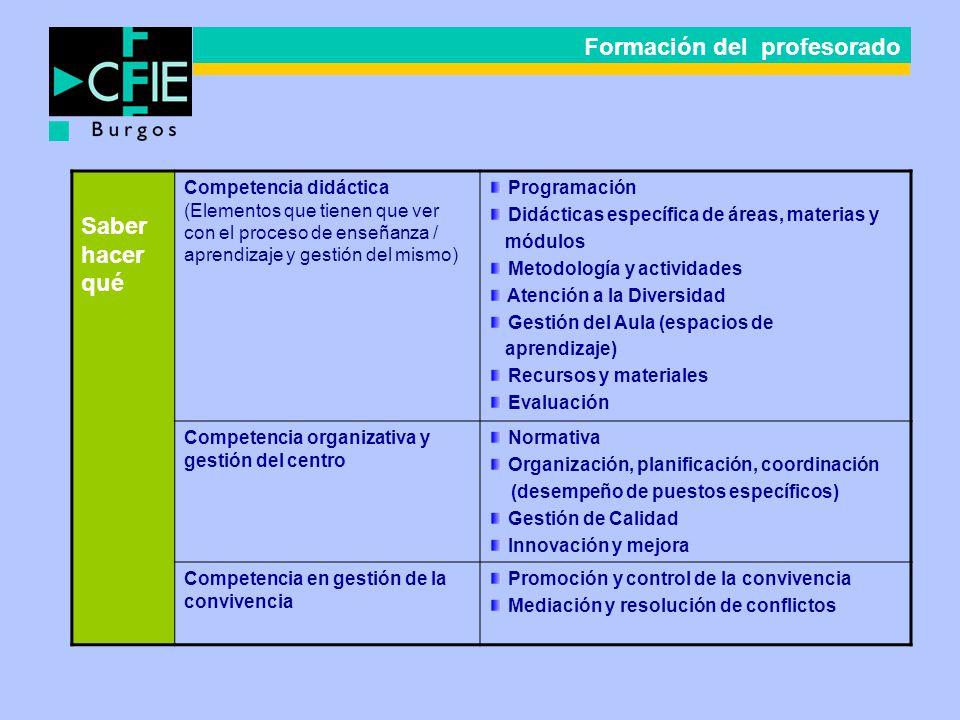 Saber hacer qué Competencia didáctica (Elementos que tienen que ver con el proceso de enseñanza / aprendizaje y gestión del mismo) Programación Didáct