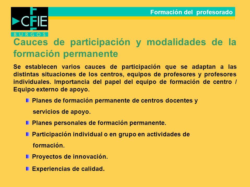 Cauces de participación y modalidades de la formación permanente Se establecen varios cauces de participación que se adaptan a las distintas situacion