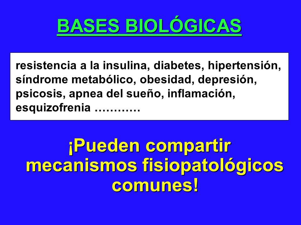 BASES BIOLÓGICAS ¡Pueden compartir mecanismos fisiopatológicos comunes! resistencia a la insulina, diabetes, hipertensión, síndrome metabólico, obesid