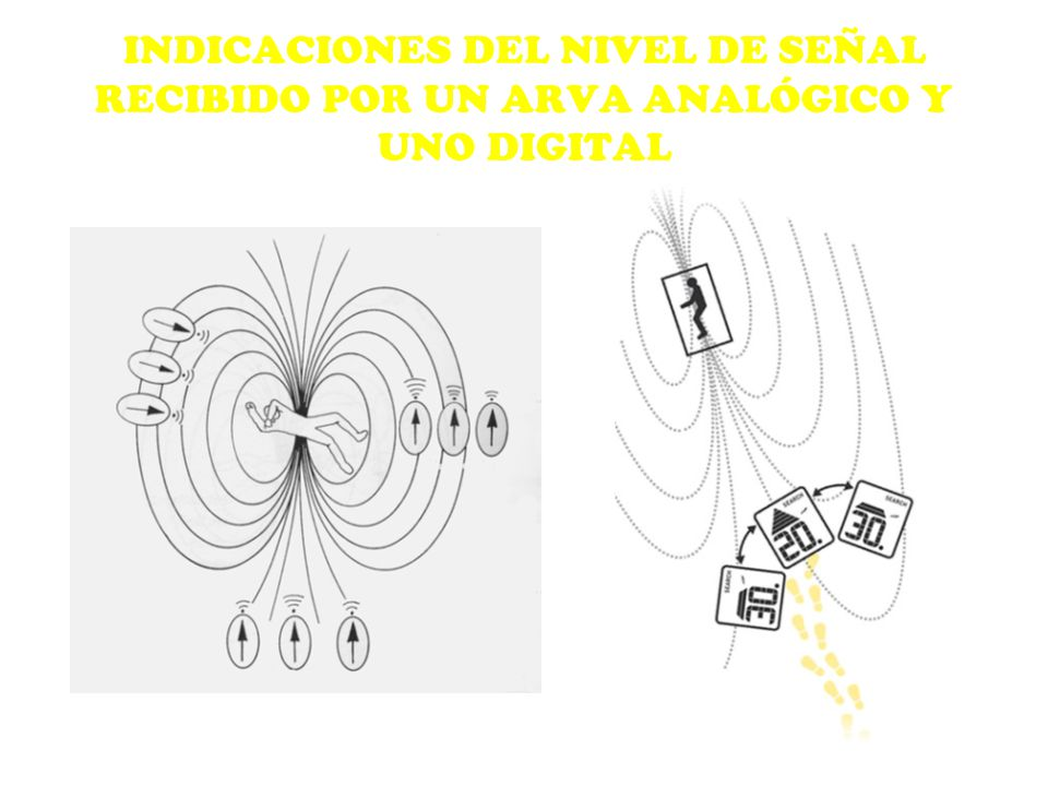 INDICACIONES DEL NIVEL DE SEÑAL RECIBIDO POR UN ARVA ANALÓGICO Y UNO DIGITAL