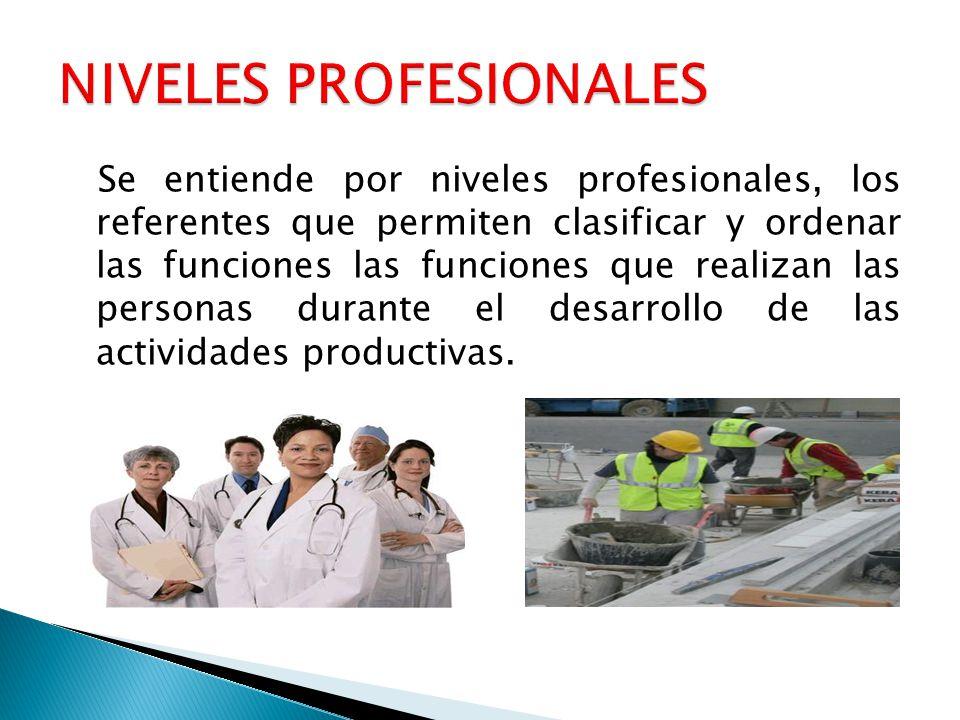 Se entiende por niveles profesionales, los referentes que permiten clasificar y ordenar las funciones las funciones que realizan las personas durante