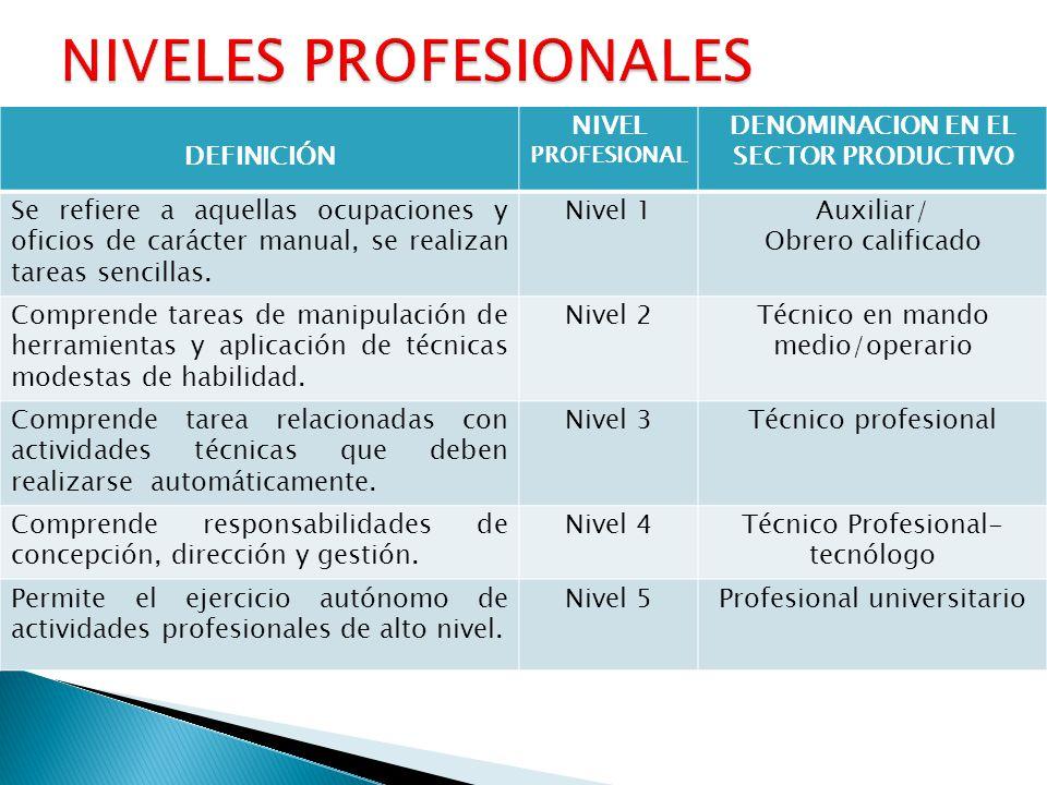 DEFINICIÓN NIVEL PROFESIONAL DENOMINACION EN EL SECTOR PRODUCTIVO Se refiere a aquellas ocupaciones y oficios de carácter manual, se realizan tareas s