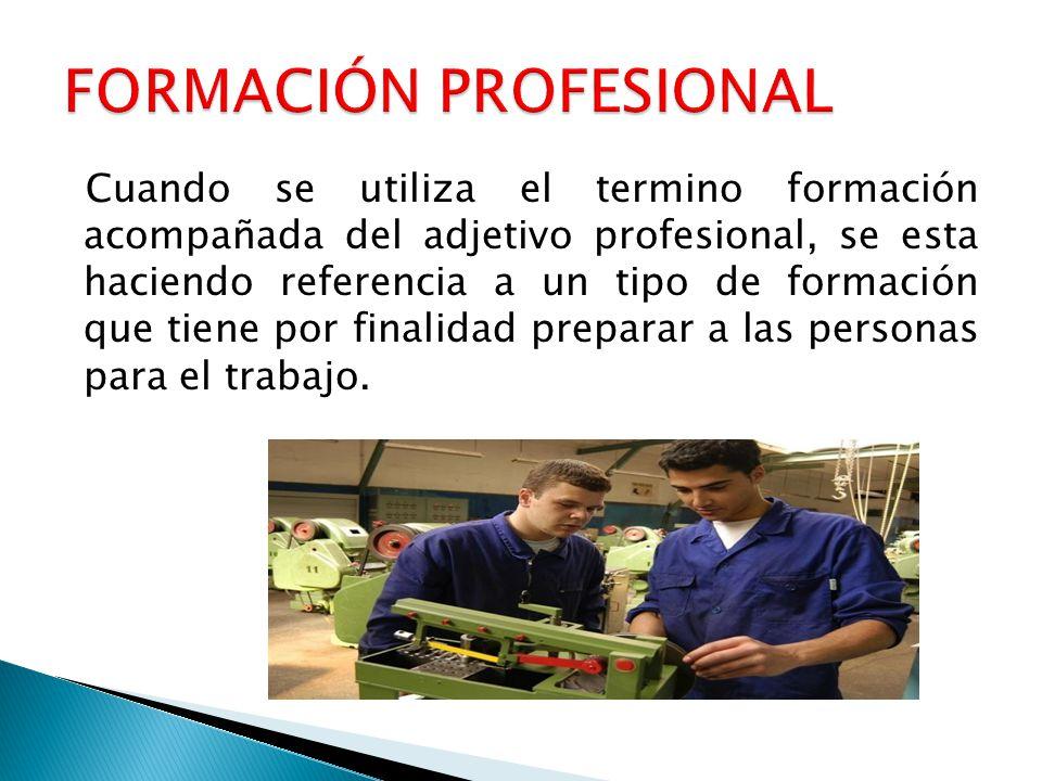 Cuando se utiliza el termino formación acompañada del adjetivo profesional, se esta haciendo referencia a un tipo de formación que tiene por finalidad