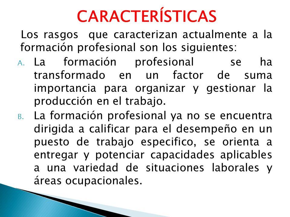 CARACTERÍSTICAS Los rasgos que caracterizan actualmente a la formación profesional son los siguientes: A. La formación profesional se ha transformado