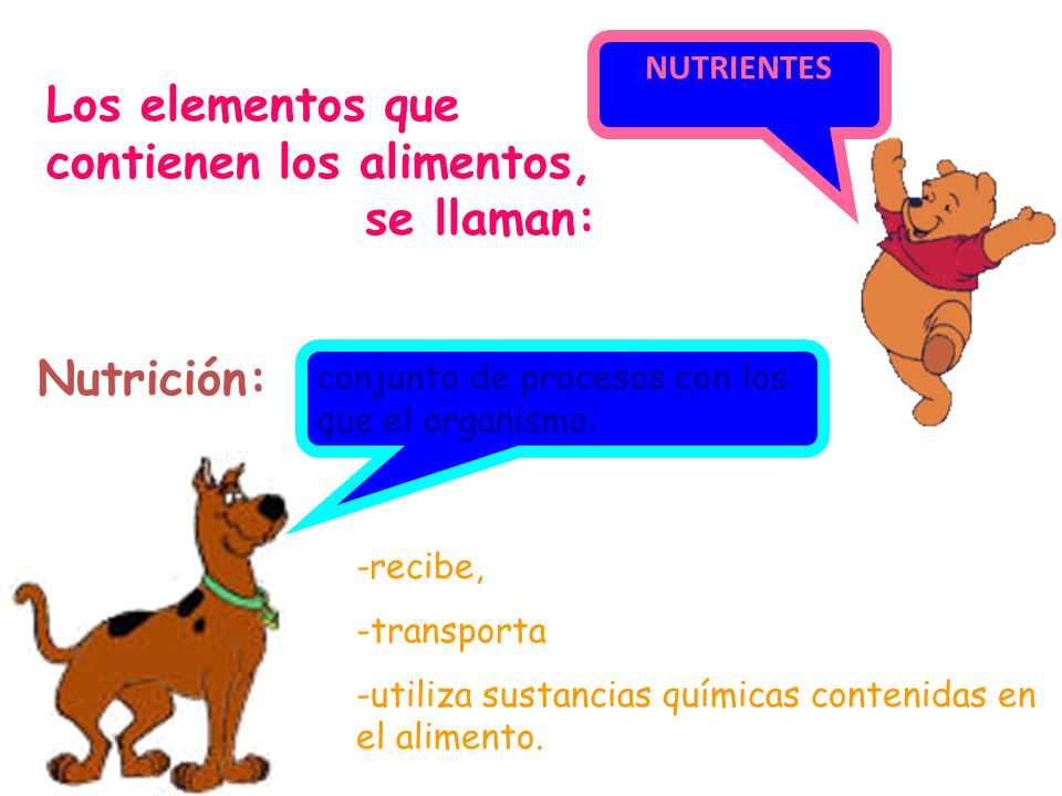 Los elementos que contienen los alimentos, se llaman: Nutrición: -recibe, -transporta -utiliza sustancias químicas contenidas en el alimento.