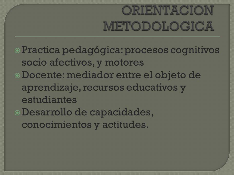 Características de los púberes y adolescentes Características y patrones culturales La motivación, el dialogo y la participación activa Necesidad de un trabajo metodológico Conocimientos previos, conocimientos nuevos.