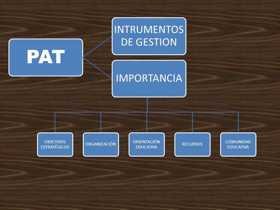 OBJETIVOS ESTRATÉGICOS ORGANIZACIÓN ORIENTACIÓN EDUCATIVA RECURSOS COMUNIDAD EDUCATIVA PAT INTRUMENTOS DE GESTION IMPORTANCIA
