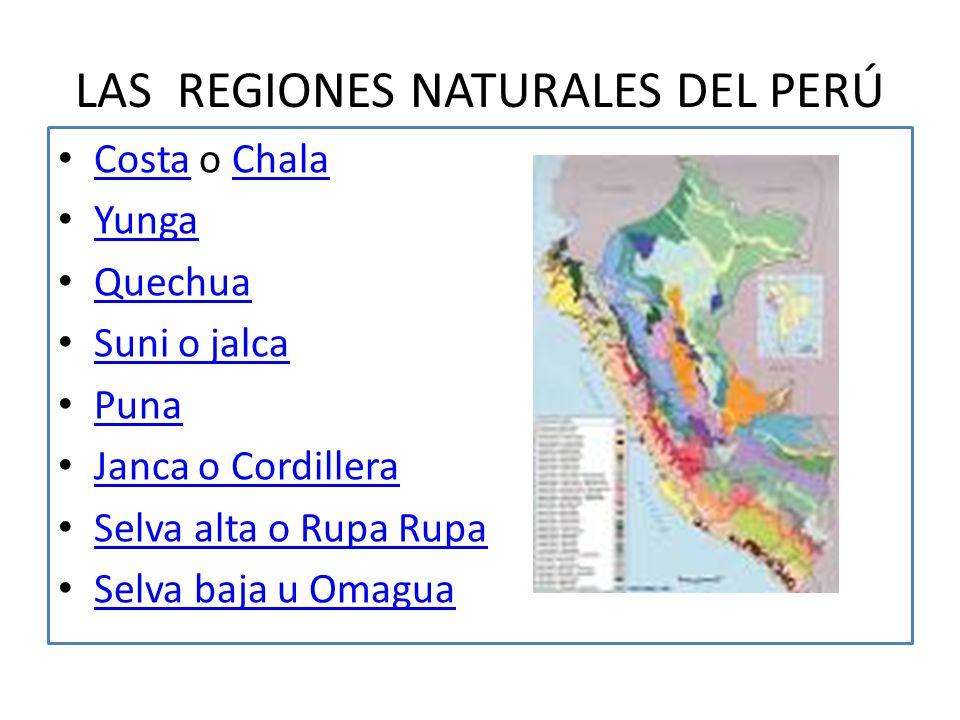 JAVIER PULGAR VIDAL Javier Pulgar Vidal, fue un geógrafo destacado del Perú. Aporto importantes estudios con respecto a la geografía peruana.geografía