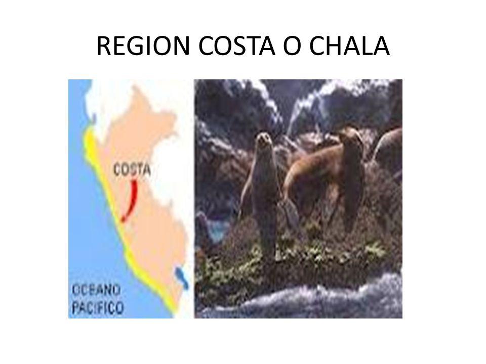 LAS REGIONES NATURALES DEL PERÚ Costa o Chala CostaChala Yunga Quechua Suni o jalca Puna Janca o Cordillera Selva alta o Rupa Rupa Selva baja u Omagua