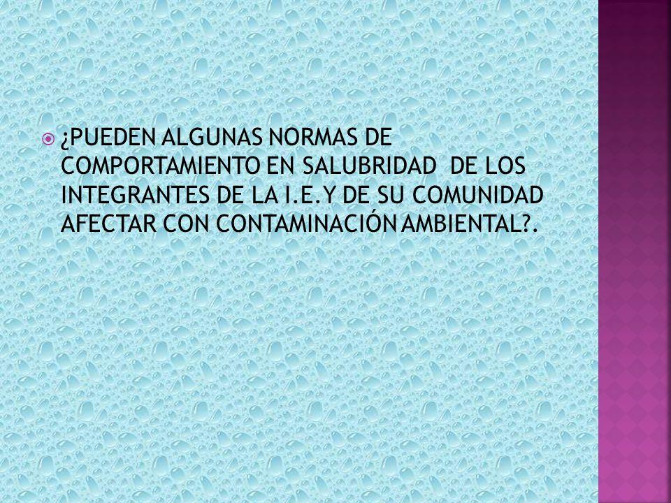 ¿PUEDEN ALGUNAS NORMAS DE COMPORTAMIENTO EN SALUBRIDAD DE LOS INTEGRANTES DE LA I.E.Y DE SU COMUNIDAD AFECTAR CON CONTAMINACIÓN AMBIENTAL?.