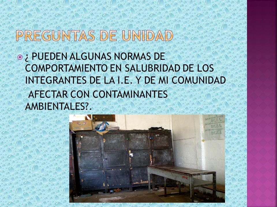 ¿ PUEDEN ALGUNAS NORMAS DE COMPORTAMIENTO EN SALUBRIDAD DE LOS INTEGRANTES DE LA I.E. Y DE MI COMUNIDAD AFECTAR CON CONTAMINANTES AMBIENTALES?.
