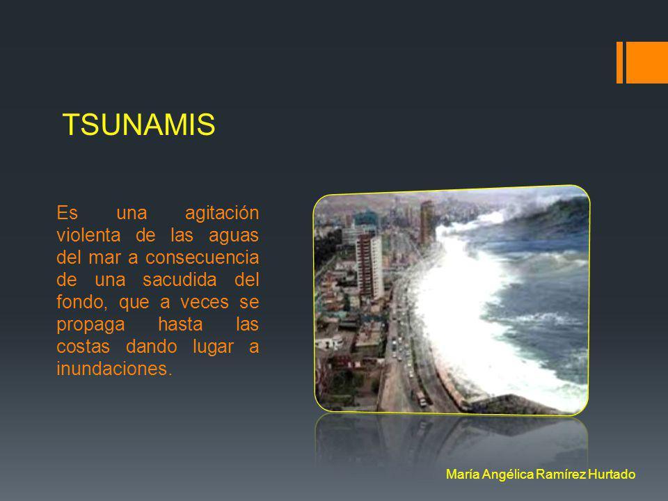 TSUNAMIS Es una agitación violenta de las aguas del mar a consecuencia de una sacudida del fondo, que a veces se propaga hasta las costas dando lugar a inundaciones.