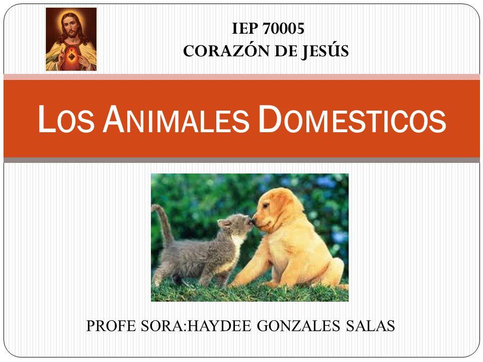 PROFE SORA:HAYDEE GONZALES SALAS L OS A NIMALES D OMESTICOS IEP 70005 CORAZÓN DE JESÚS