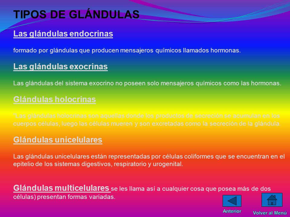 GLANDULAS La glándula es un órgano de origen epitelial cuya función es la de segregar ciertas sustancias fueras del organismo.