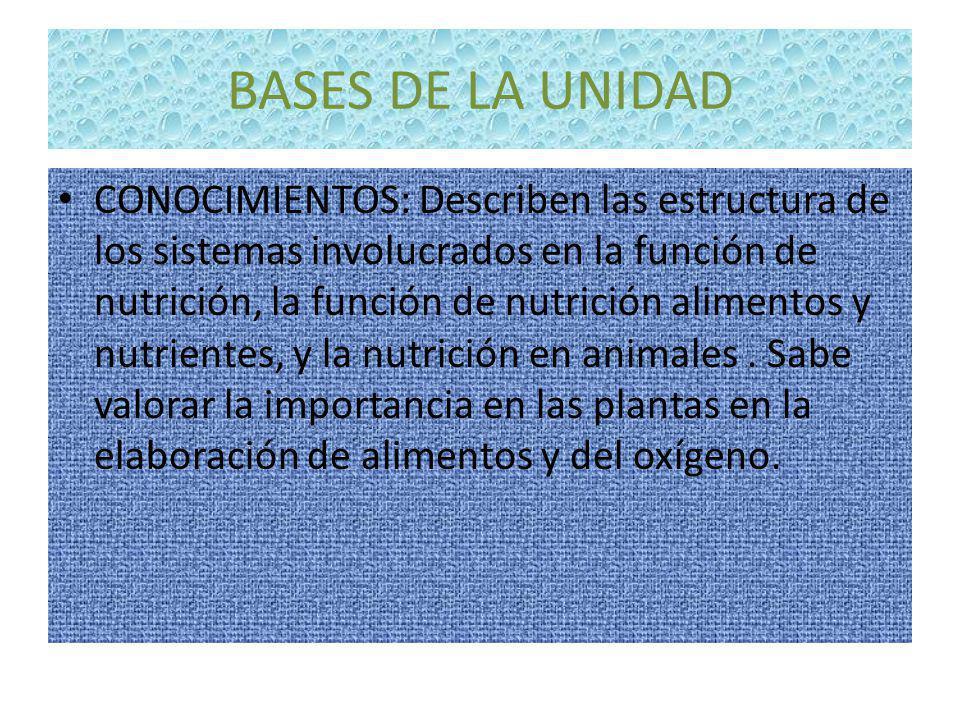CAPACIDADES Discriminan los conceptos de nutrición y alimentación Analiza los diferentes proceso de nutrición.